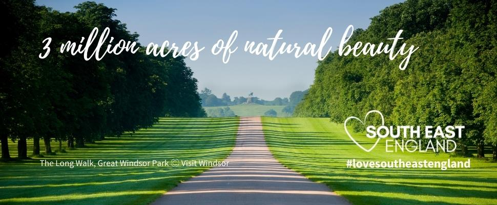Discover the South's, 3 million acres of natural beauty, including the Long Walk, Windsor part of Great Windsor Park