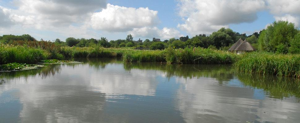 Arundel Wetland Centre