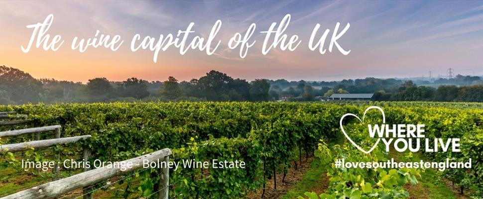 South East England is home to award winning English wines and over 140 vineyards.