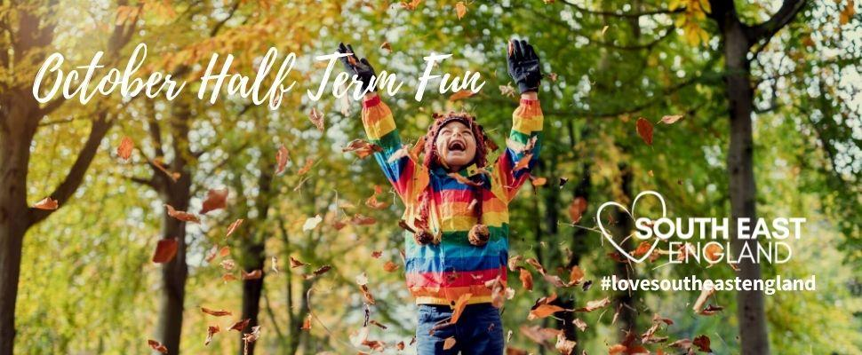 Child having fun in amongst the autumn leaves