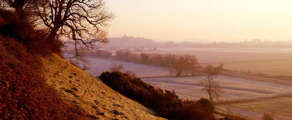 Rye Countryside