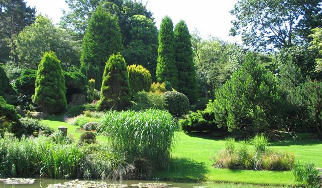 The Pines Garden, Tea Room & Museum