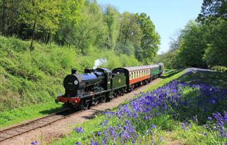 Half term at Bluebell Railway