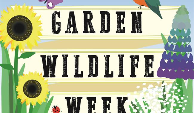 Garden Wildlife Week