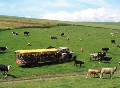Coombes Farm Tours