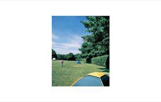 Camping & Caravanning Club Site Oldbury Hill