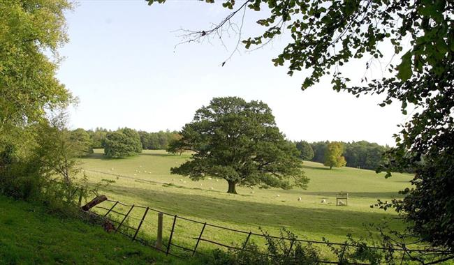 The Chiltern Hills at Great Missenden