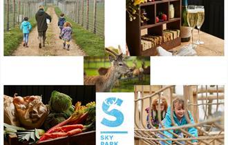 Sky Park Farm