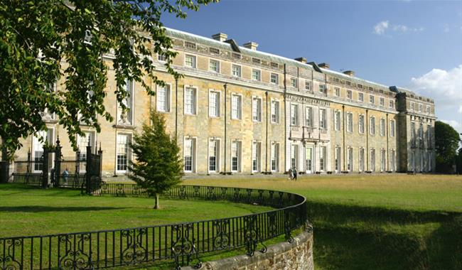 Petworth House & Park