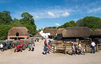 Manor Farm (Farm and Museum)