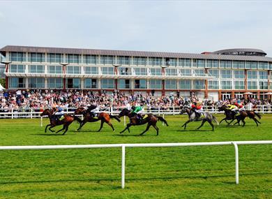 Lingfield Park Racecourse