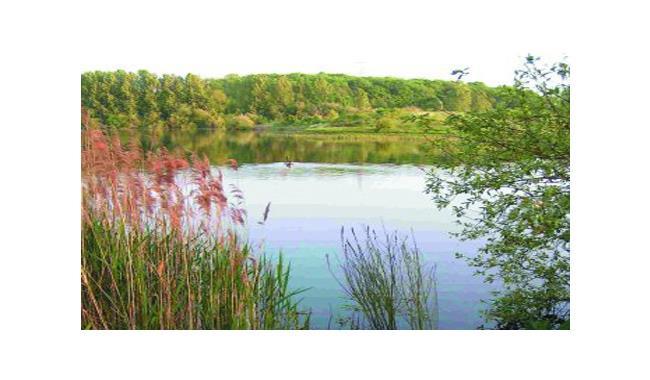 Hosehill Lake