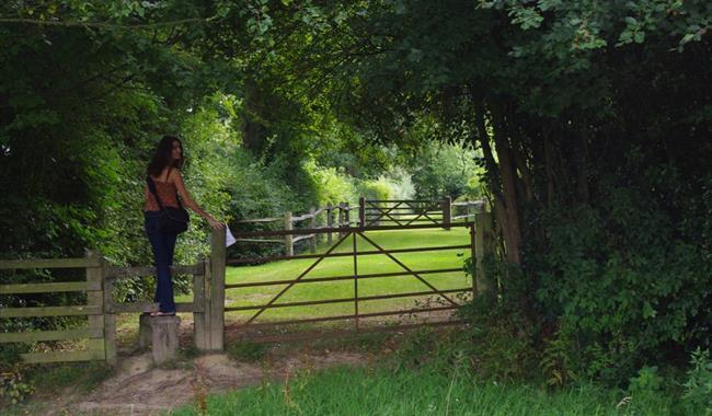 Great Oak Walks