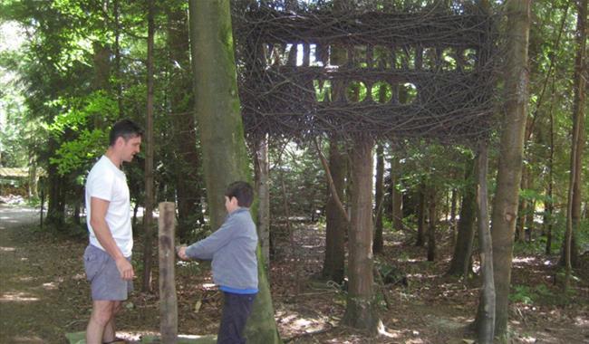 Wilderness Wood