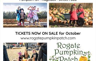 The Rogate Pumpkin Patch