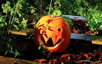 October Half Term Activities: Fun for All the Family