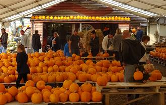 Pumpkin Festival at Sunnyfields Farm