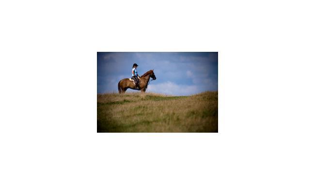 Sussex Equestrian Club