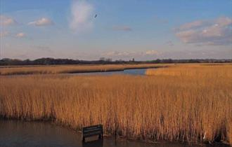 Titchfield Haven National Nature Reserve
