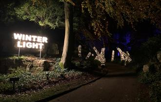 Winter Light at Waddesdon