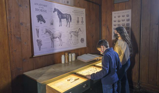 The Stables Exhibition