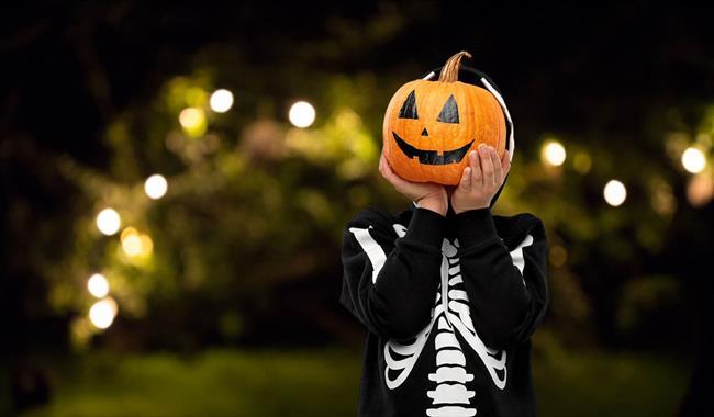 Halloween at Blenheim