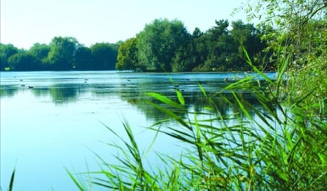 Lake at Hardwick Parks