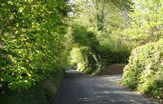 The Surrey Hills