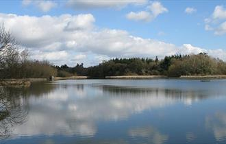 Warnham Nature Reserve