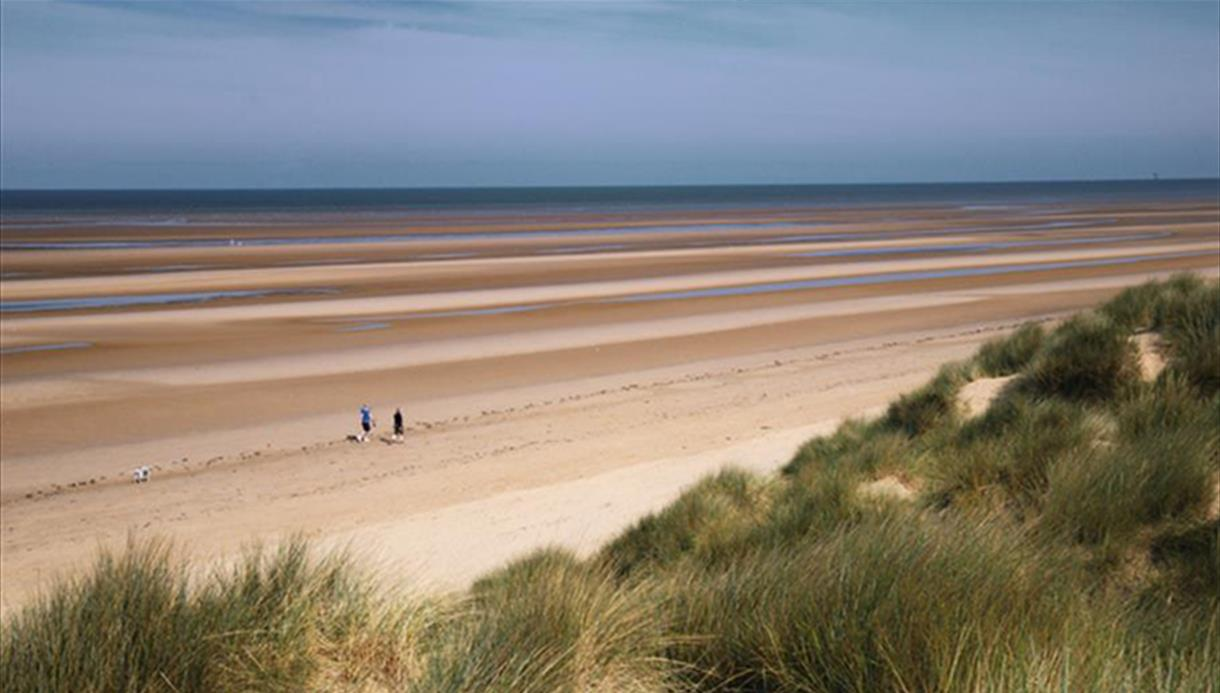 A shot of the beach taken from grassy and sandy dunes. There are two walkers on the beach. The tide is out far and blends with the blue sky.
