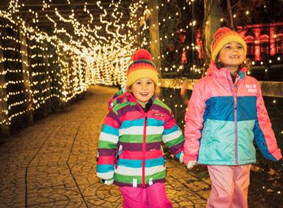 Spectacular Light Trail (Family-friendly Winter Light Show)