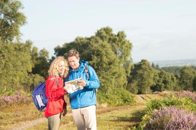Couple consulting map whilst walking on Cannock Chase heather heathland