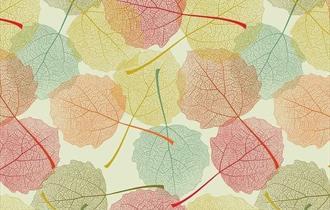 Autumn Colours Holiday Workshop