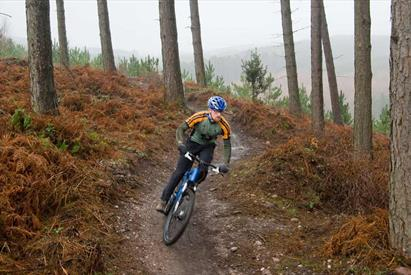 Cannock Chase Forest, Staffordshire offers world-class mountain biking trails and is the venue for 2022 Birmingham Commonwealth Games Mountain Bike ev