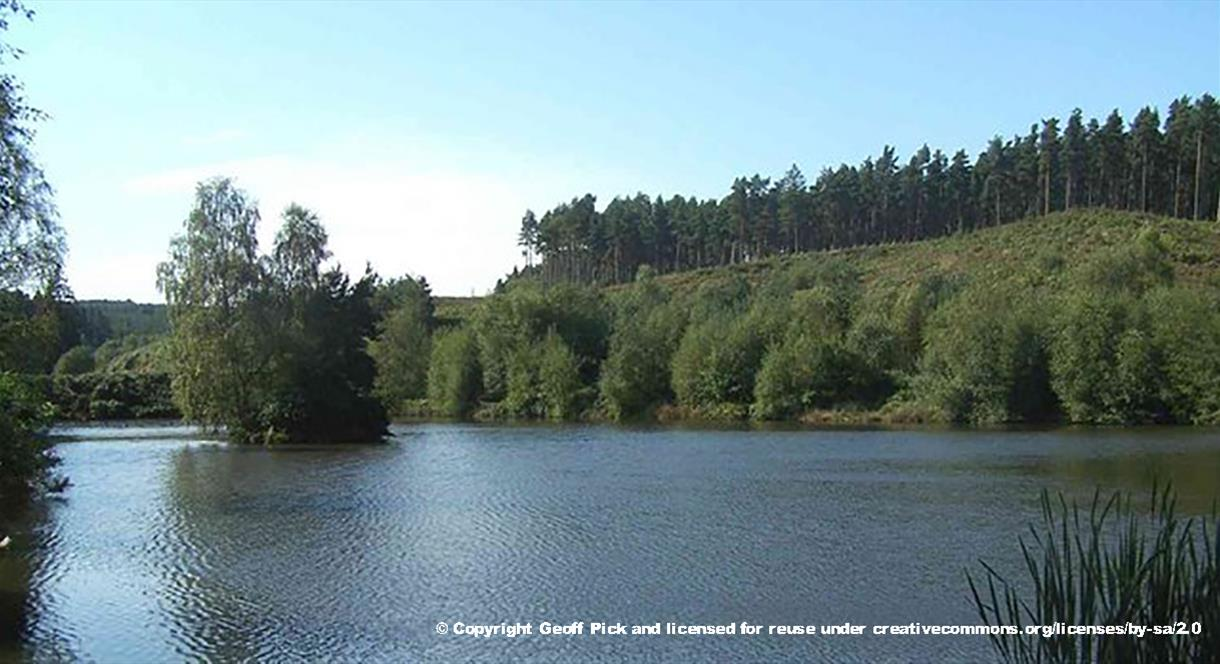The beautiful Fairoak Pools at Cannock Chase, Staffordshire. Copyright Geoff Pick.