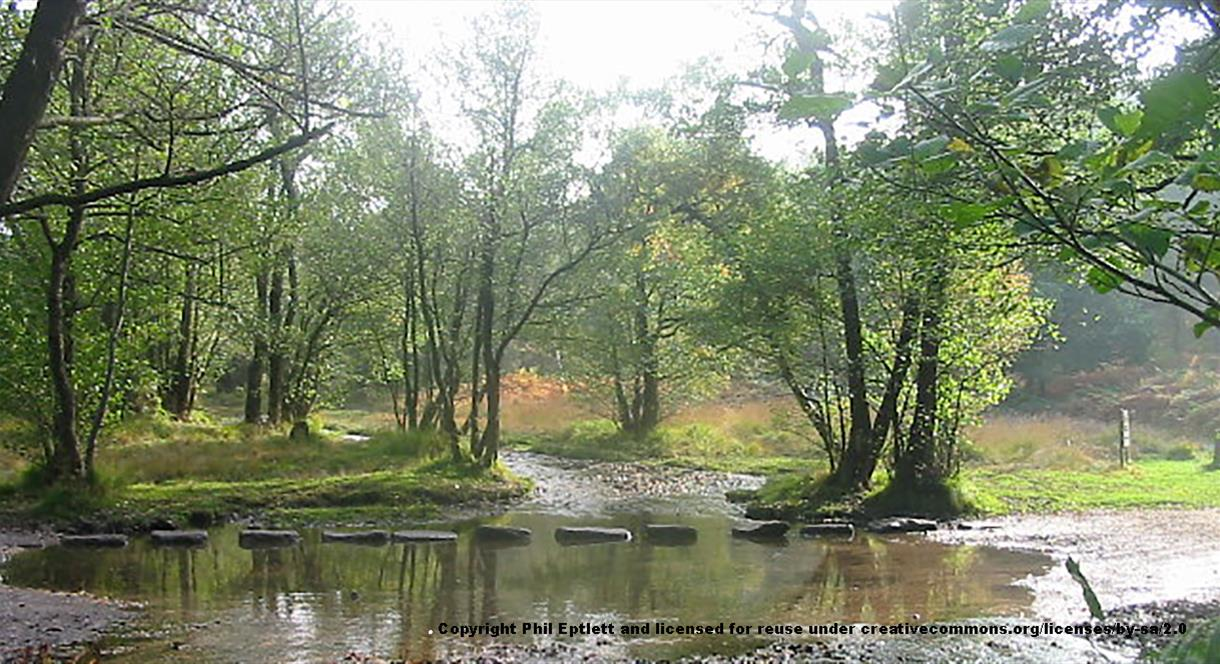The Stepping Stones at Cannock Chase, Staffordshire. Copyright Phil Eptlett.