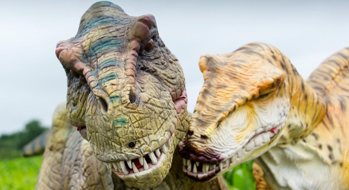 Dino Summer at the Adventure Farm, Staffordshire.