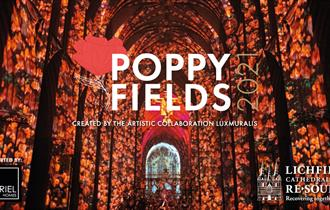 Poppy Fields 2021 at Lichfield Cathedral. Created by the artistic collaboration Luxmuralis.