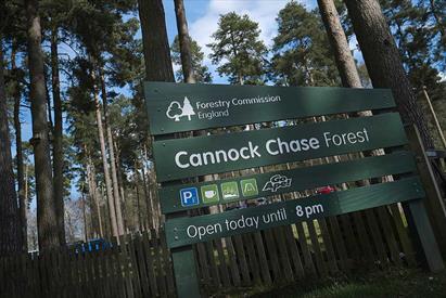 Birches Valley Forest Centre