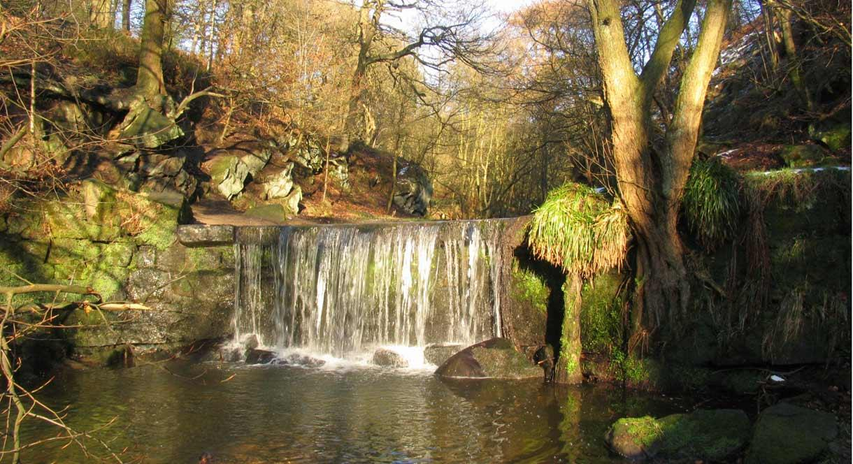 Waterfall from the Upper Trent at Knypersley in Greenway Bank