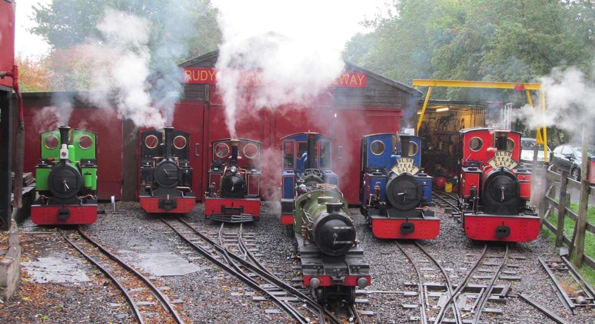 Trains outside the sheds