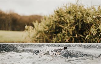 Bubbling waters await!