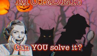 Scream Murder Family Activity - The True CRIME Museum!