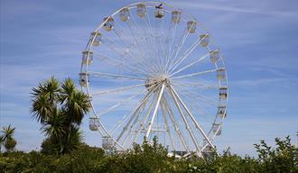 Eastbourne Eye - Big Wheel