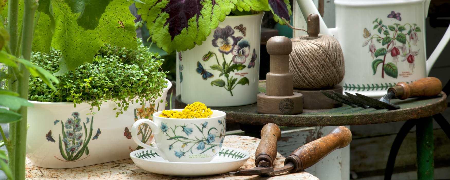 Portmeirion Potteries