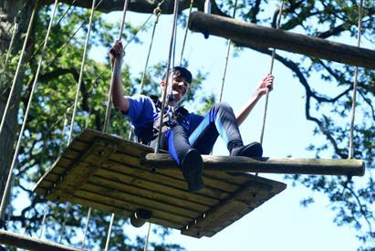 Trentham Treetop Adventures