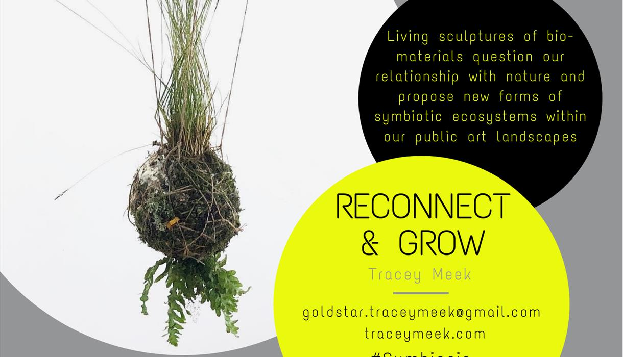 Reconnect and Grow