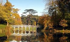 Thumbnail for Painshill