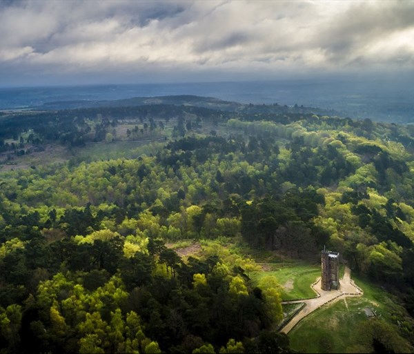 Thumbnail for The Surrey Hills (AONB)