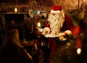 Father Christmas at Bocketts Farm Park